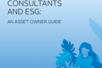 Investment Consultants And Esg: An Asset Owner Guide