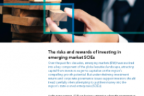 The risks and rewards of investing in emerging market SOEs