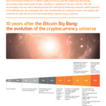 10 years after the Bitcoin Big Bang: the evolution of the cryptocurrency universe
