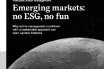 Emerging markets: no ESG, no fun