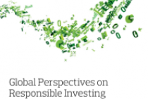 Global Perspectives on Responsible Investing 2019