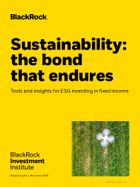 Sustainability: the bond that endures Tools and insights for ESG investing in fixed income