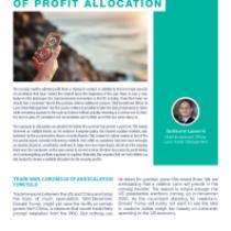 The Delicate Art Of Profit Allocation
