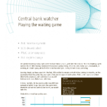 Central Bank Watcher: playing the waiting game