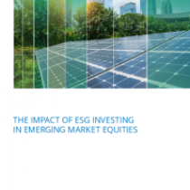 The impact of esg investing in emerging market equities