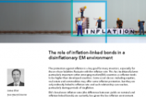 The role of inflation-linked bonds in a disinflationary EM environment