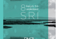 8 Keys to understand SRI