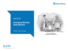 Emerging Markets Debt Monitor
