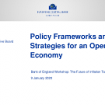 Policy Frameworks and Strategies for an Open Economy