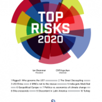 Top Risk 2020