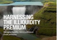 Harnessing the Illiquidity Premium
