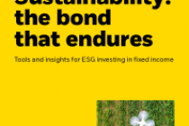Sustainability: the bond that endures