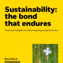 Sustainability: the bond that endures