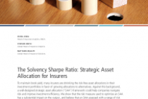 The Solvency Sharpe Ratio: Strategic Asset Allocation for Insurers