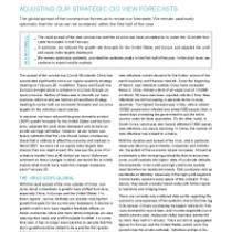 Adjusting Our Strategic Cio View Forecasts