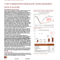 COVID-19 dampened Feb activity growth; countercyclical policies stepped up