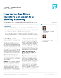 How Large Cap Stock Investors Can Adapt to a Slowing Economy