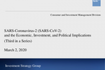 SARS-Coronavirus-2 (SARS-CoV-2) and the Economic, Investment, and Political Implications