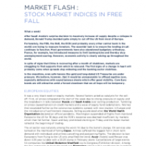Stock Market Indices in Free Fall
