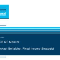 ECB QE Monitor