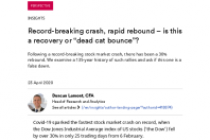 """Record-breaking crash, rapid rebound – is this a recovery or """"dead cat bounce""""?"""