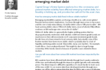 Volatility in 2020: What it means for emerging market debt