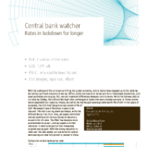 Central Bank Watcher