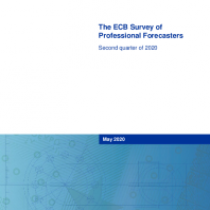 The ECB Survey of Professional Forecasters