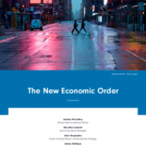 The New Economic Order