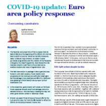 COVID-19 update: Euro area policy response