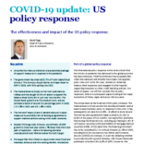 The effectiveness and impact of the US policy response