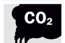 Climate Change Risk Management