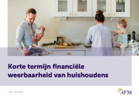 Korte termijn financiële weerbaarheid van huishoudens