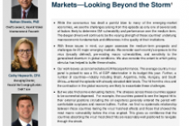 The Prospects for the Emerging Markets—Looking Beyond the Storm1