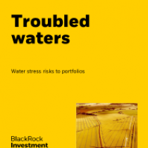 Troubled waters – Water stress risks to portfolios