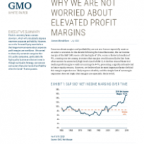 Why we are not worried about elevated profit margins