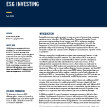 A Consistent Approach To Custom Esg Investing