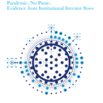 Pandemic, No Panic: Evidence from Institutional Investor flows
