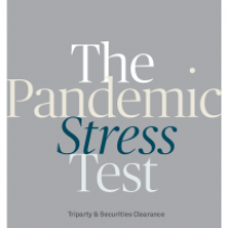 The Pandemic Stress Test