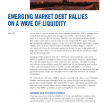 Emerging Market Debt Rallies on a Wave of Liquidity