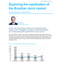 Exploring the equitisation of the Brazilian stock market