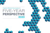 Five-Year Perspective 2020