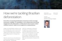 How we're tackling Brazilian deforestation