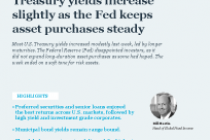 Treasury yields increase slightly as the Fed keeps asset purchases steady