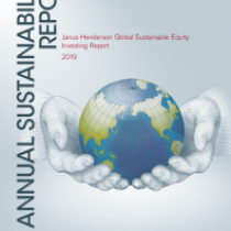 Anual Sustainability Report over 2019