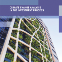 Climate change analysis in the investment process