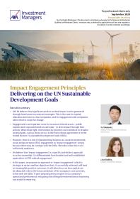 Delivering on the UN Sustainable Development Goals
