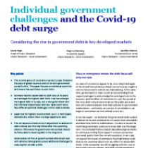 Individual government challenges and the Covid-19 debt surge