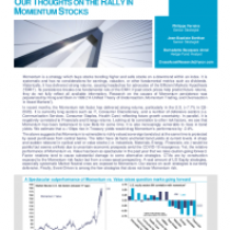 Our thoughts on the rally in momentum stocks