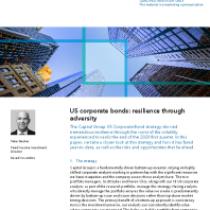 US corporate bonds: resilience through adversity
